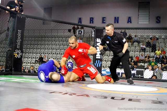 IMMAF MMA action photos 47