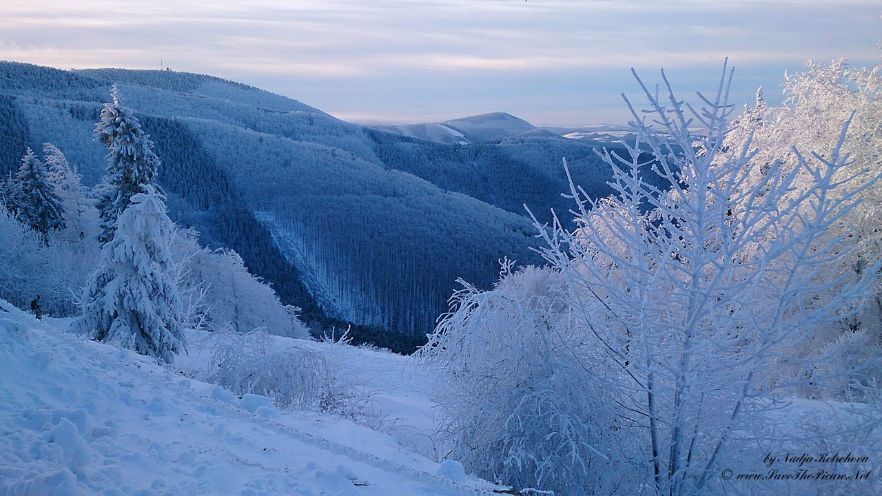 Beskid_Mountains_winter_scenery, Czech Republic