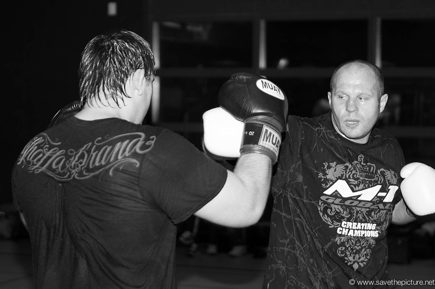 Fedor Emelianenko MMA power punching