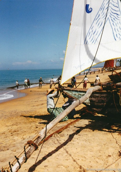 Sri Lanka catamaran art, pulling the boats