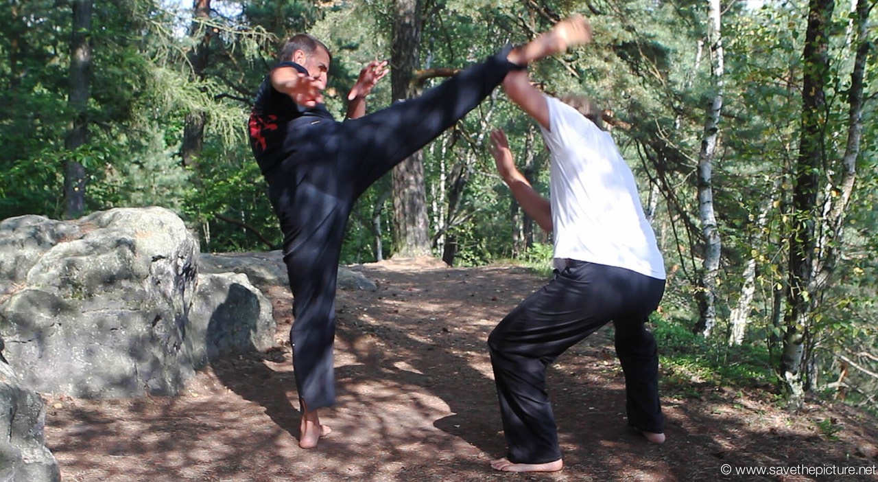 Taikiken mawashi geri block with Elbow lift